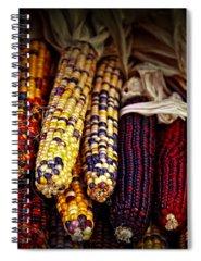 Indian Corn Photographs Spiral Notebooks