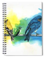 Rainbow Spiral Notebooks