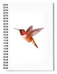 Rust Spiral Notebooks