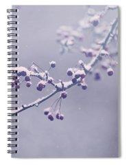 Blue Berry Photographs Spiral Notebooks