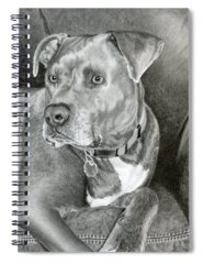 Mixed Breed Drawings Spiral Notebooks