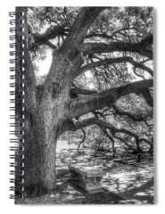 Bark Spiral Notebooks