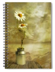 Peaceful Spiral Notebooks