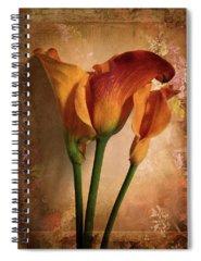 Border Spiral Notebooks