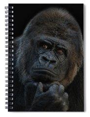 Ape Spiral Notebooks