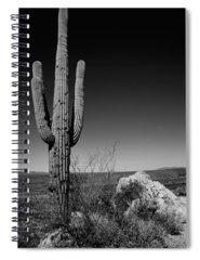 Saguaro Photographs Spiral Notebooks