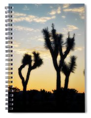 Joshua Tree National Park Spiral Notebooks