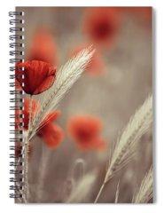 Poppies Spiral Notebooks