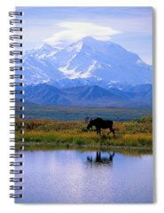 Environment Photographs Spiral Notebooks