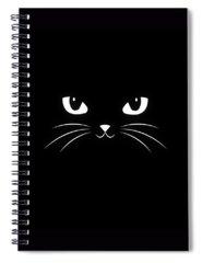 Cats Cool Spiral Notebooks