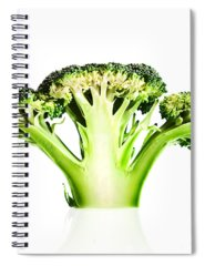 Designs Similar to Broccoli Cutaway On White