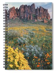 Spring Mountains Photographs Spiral Notebooks