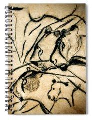 Designs Similar to Chauvet Cave Lions