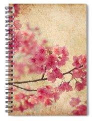 Cherry Blossom Spiral Notebooks
