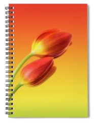 Flower Spiral Notebooks