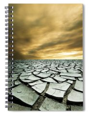 Desert Spiral Notebooks