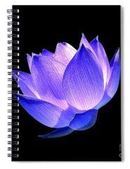 Lotus Spiral Notebooks