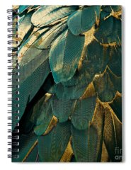 Feather Spiral Notebooks