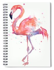Watercolor Spiral Notebooks