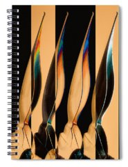 Fountain Pen Spiral Notebooks