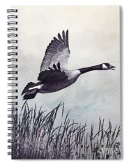 Designs Similar to Graceful Canada Geese