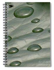 Fotosbykarin Spiral Notebooks