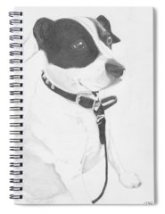 Crossbreed Drawings Spiral Notebooks