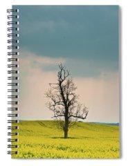 Forlornness Photographs Spiral Notebooks