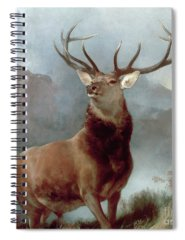 Oil Paintings Spiral Notebooks