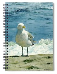 Seashore Spiral Notebooks