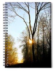 Light Spiral Notebooks