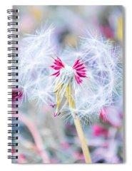Dine Spiral Notebooks