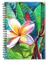 Island Spiral Notebooks