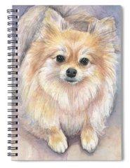 Pomeranian Spiral Notebooks