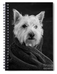Mammal Photographs Spiral Notebooks