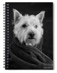 Portrait Spiral Notebooks