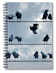 Humor Digital Art Spiral Notebooks