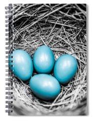Eggs Photographs Spiral Notebooks