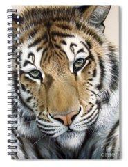 Acrylic Spiral Notebooks