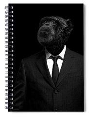 Professional Photographs Spiral Notebooks