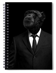 Monkey Spiral Notebooks