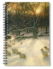 Sunset Spiral Notebooks