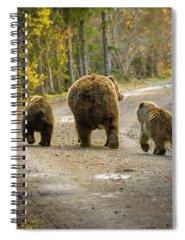 Alaska Spiral Notebooks