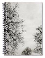 Limb Spiral Notebooks