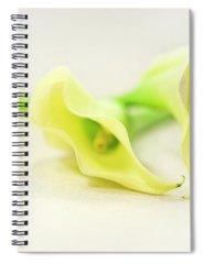 Calla Photographs Spiral Notebooks