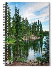 Pine Spiral Notebooks