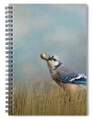 Designs Similar to Treasure Hunter Blue Jay Art