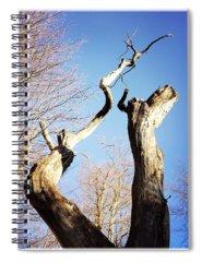 Sky Spiral Notebooks