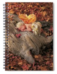 Fairy Photographs Spiral Notebooks