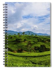 Nature Seekers Spiral Notebooks